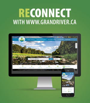 Computer and cell phone screen showing new website
